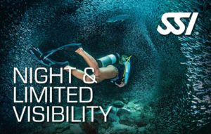 Night Specialty Dive Course