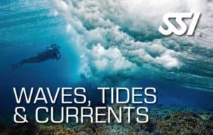Wave, Tides and Currents Specialty Dive Course