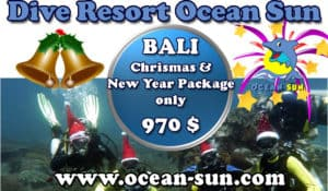Chrismas and New Years eve package